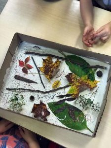 Leaves in a Box